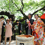 神戸北野 ハンター迎賓館:赤飯にごま塩をふりかける初めての共同作業は、和の雰囲気たっぷり。緑が輝く日本庭園で鏡開きを行った!
