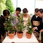 TERAKOYA:植物を愛するふたりにぴったりの「土合わせの儀」。幸せを運ぶクチナシの鉢植えを作り、両家にプレゼント