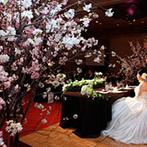 ヒルトン東京:会場内に生えているような存在感のある桜の木が見守るパーティ。お花見気分で美味しいお酒と料理を堪能