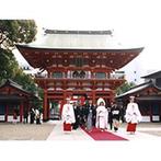 生田神社・生田神社会館:見学の際に見かけた、実際の式の雰囲気に感動。緑に映える朱色の本殿が印象的で、式のイメージもふくらんだ