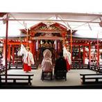 生田神社・生田神社会館:白無垢姿の新婦の美しさに新郎も感動!太鼓の音が鳴り響く中、心地よい緊張感に包まれながら厳粛な神前式