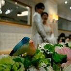 ラグナヴェール 青山:ナチュラルカラーの花々の間に、可愛い小鳥が顔を覗かせるキュートな空間で、和やかなパーティが叶った