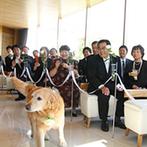 奈良町 あしびの郷:緑と光あふれるチャペルは、木の温もりを感じる癒しの空間。愛犬も参加して笑顔いっぱいの挙式が叶った