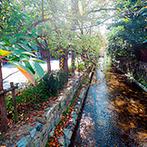ザ オーク ガーデン(THE OAK GARDEN):陽光が降り注ぐチャペル&披露宴会場でアットホームな結婚式を。大自然に囲まれた貸切一軒家に運命を感じた