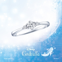 KINSYODO HONTEN (金正堂本店)_Disney Cinderella~ウェイ・トゥ・ドリーム~