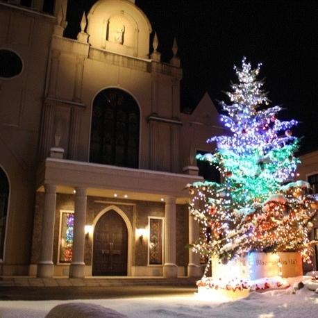 ブルーミントンヒル:【4日間限定】クリスマスフェア★
