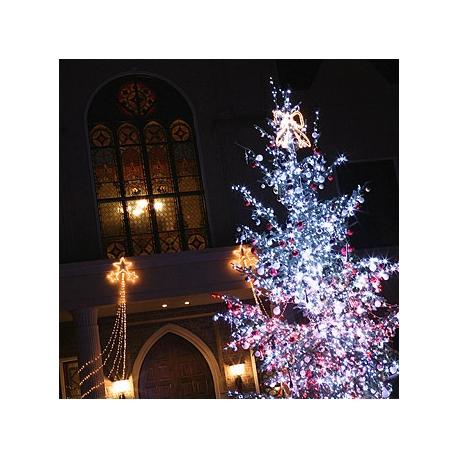 ブルーミントンヒル:クリスマス特別ランチ試食&試着&大聖堂見学フェア