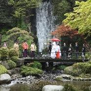 ロイヤルガーデンパレス 柏 日本閣:【出雲大社×歴史×格式】柏 日本閣で叶える伝統の神前式フェア