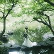 八芳園:約1万坪の庭園散策×ゆったり館内見学で八芳園の魅力を体感