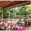 Yoshikawa Village (よし川):瑞々しい緑が輝く日本庭園を備える料亭の平日試食フェア