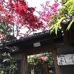 Yoshikawa Village (よし川):広大な日本庭園の散策付き!本格派料亭の平日豪華無料試食会