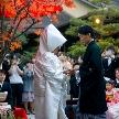 よし川:【6ヶ月以内の挙式☆特典あり】料亭の無料試食付き和婚フェア