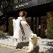 THE SUITE CLASSICA SENDAI(ザ スイート クラシカ仙台)のフェア画像
