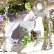 Art Bell Ange Mie (アールベルアンジェ ミエ)のフェア画像