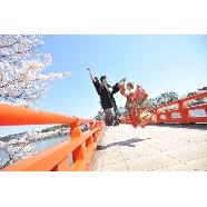 The Historical & Modern YASUNE(やすね):【2018年3月~5月挙式希望のお客様へ】春婚フェア開催!