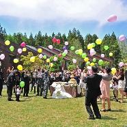ホテル シェラリゾート白馬:★4月5月6月ご検討の花嫁限定★春ウエディングフェア