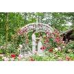 THE NIDOM RESORT WEDDING:【模擬挙式見学♪】ガーデンW満喫&体験フェア♪♪