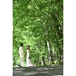 THE NIDOM RESORT WEDDING:★特典付き★【日曜限定!】模擬挙式×無料コース試食付☆