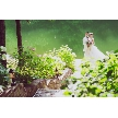 THE NIDOM RESORT WEDDING:【平日も!】ドレス試着×一口試食×ニドムの広大な敷地ツアー♪