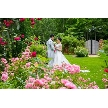 THE NIDOM RESORT WEDDING:【AM限定!】無料コース試食付☆本番前の会場見学ツアー♪