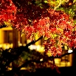 THE GARDEN DINING 弓絃葉:※残枠僅か■紅葉の美景!プレミアム特典付■会場見学&無料試食