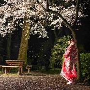 大井神社 宮美殿:【平日限定】お仕事帰りに寄り道相談会♪