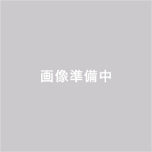KITAGAWA(キタガワ)_★ディズニーアニメーション美女と野獣ブライダルコレクション★
