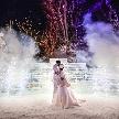 ジャルダン・ドゥ・ボヌール:ダイヤモンド贈呈◇冬のオリジナル婚◇100カラットウエディング