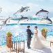 THE LUIGANS Spa & Resort(ザ・ルイガンズ. スパ & リゾート):【ドルフィンセレモニー体感】水族館見学×豪華フルコース試食付