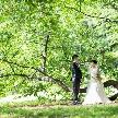 ル・ジャルダン:アットホーム婚:貸切ガーデン×流しテーブル×ナチュラルW体験