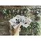 ルメルシェ元宇品:【平日の見学は人気急上昇!】自由度高め☆おしゃれウェディング