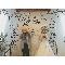ルメルシェ元宇品:【平日は2人のペースで♪】アットホームな結婚式のつくりかた