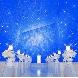 アリラガーデンリゾート:【知多牛×アワビ】星空チャペル体験と豪華試食フェア