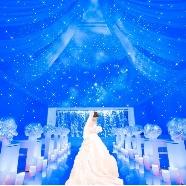 セレブレーション!ステラ:【特製スイーツ付】挙式体験×豪華試食付☆プリンセスフェア☆