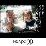 披露宴の演出:Nespa DD(ネスパディディ)