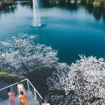 TOBE AUBERGE RESORT:★組数限定★桜満開!毎年人気の特典付きブライダルフェア