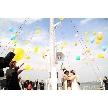 ロイヤルウイング ~Wedding Cruise~:【船上ウェディングを体感!】じっくり安心◎船上見学&相談会♪