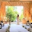 挙式だけも考えたい。家族との会食や、友人や親戚を招待しての披露宴も考えたい。。2021年の挙式の方には、挙式無料や人数によってもらえる豪華特典をご用意!空間除菌で衛生◎の館内で婚礼料理も堪能できます。