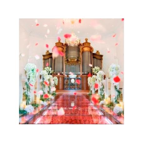 ROSA FELICE(ローザフェリーチェ):【チャペル重視のカップルへ】ほかにはない☆感動挙式体験フェア