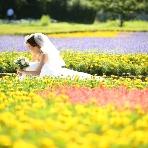 ロケーション撮影、前撮:Wedding Story(ウェディングストーリー)