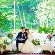 東郷神社・ルアール東郷:<水曜&組数限定>憧れの花嫁体験&無料試食付きフェア