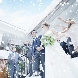 ローズガーデン/ロイヤルグレース大聖堂のフェア画像