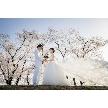 岡山プラザホテル:【残3組】桜シーズンに挙式のおふたりへSAKURA相談会