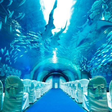品川プリンスホテル:【水族館チケット付】豪華試食×オリジナル水族館W相談フェア
