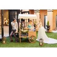 バードグリーンホテル レジーナ:【まだいける!】年内結婚式プラン相談会(無料試食付き)
