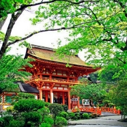 京都ブライトンホテル:【神社挙式ご検討の方へ】無料フルコース試食×コーディネイト