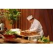 報徳二宮神社/報徳会館:【料理重視の方へ】1プレート試食付フェア