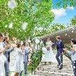 赤坂 アプローズスクエア迎賓館:【6月プレミア◆最大120万優待】緑に佇む迎賓館・ガーデンW体験
