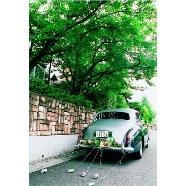 ザ・グリーンカーメル(The Green Carmel):上質な空間とおもてなしを愉しむ大人Wedding相談会
