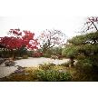 The Private Garden FURIAN 山ノ上迎賓館:平日人気No1.【豪華絢爛×伝統格式】平日限定の試食付相談会